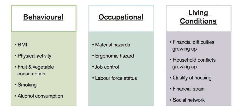 Behavioural, occupational and living conditions set of social determinants
